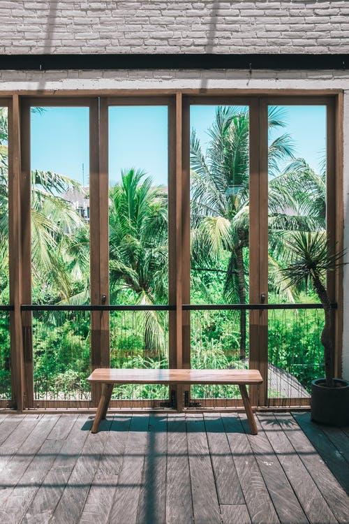 palmy lavička